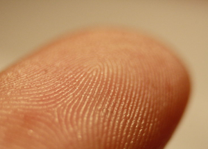 photo of a fingerprint